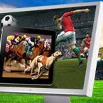 Виртуальный букмекер, тотализатор и ставки на спорт